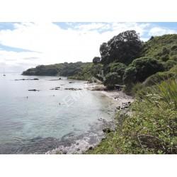 Coastal Rural