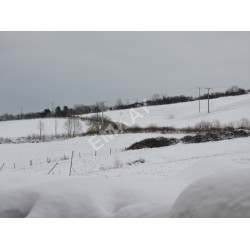 Snow / Frost / Ice