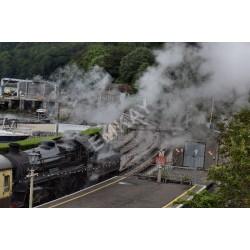 Smoke / Steam