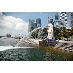Iconic SINGAPORE CITY