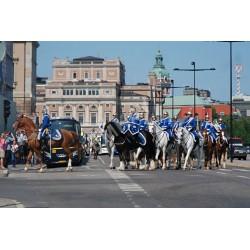 Iconic STOCKHOLM